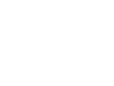 305 Sandown Logo